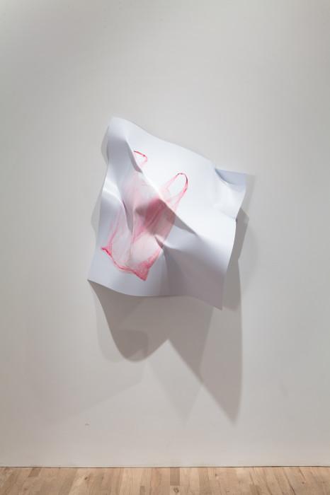 agreement n.2 pink plastic bag