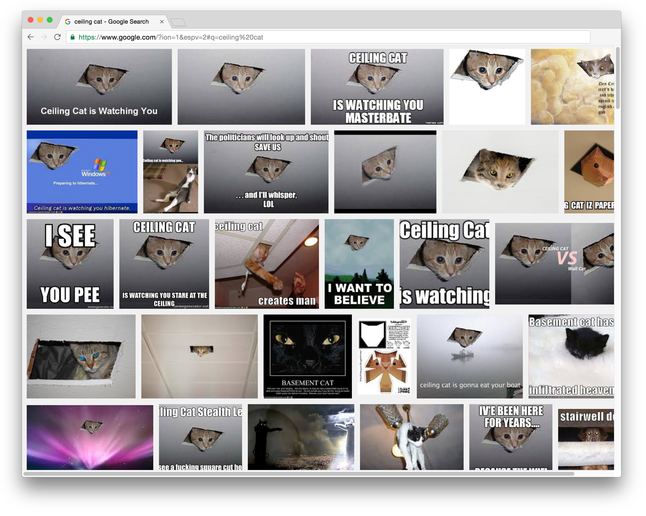 ceiling cat meme browser