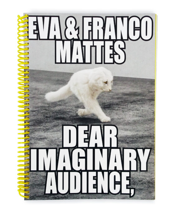 Eva & Franco Mattes, Dear Imaginary Audience