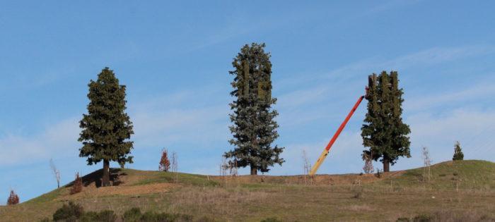 cellular tower pennington creek road, san luis obispo