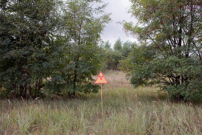 planc chernobyl 7698